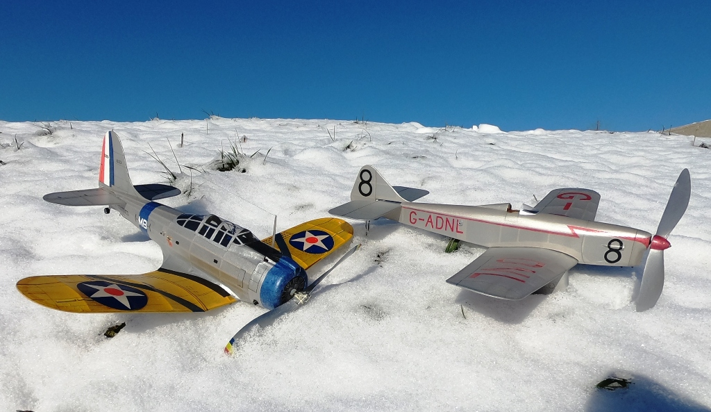 210219_Dimers_in_the_Snow_Small.JPG