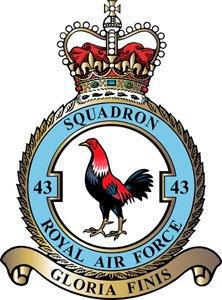 43_Squadron_RAF.jpg