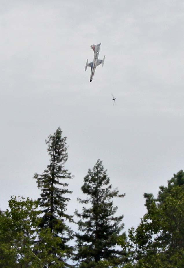 F94Canddragonfly.jpg