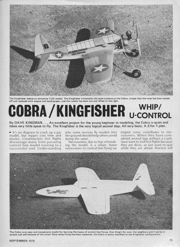 Kingfisher_Cobra_Article1_001.jpg