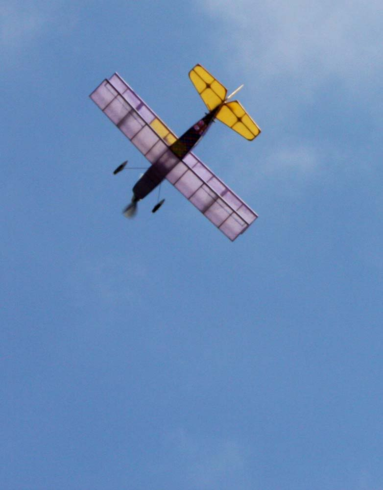 Lavendertinkthirdflightoverhead.jpg