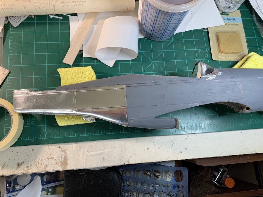 P-51_FM_-_10.jpeg