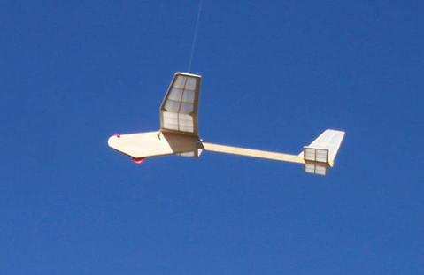 SCB02-11-09_fly.jpg
