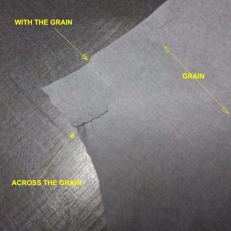 Tissue_Tear_Test_001.jpg