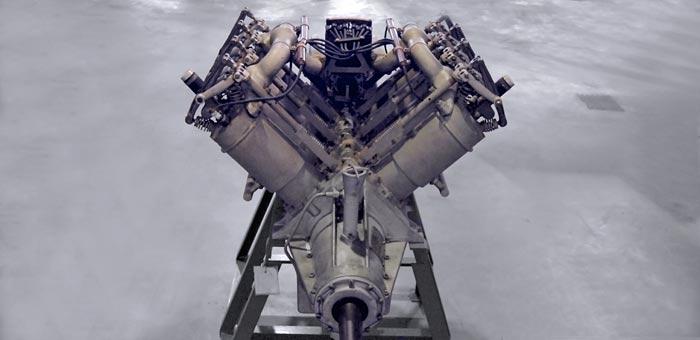 ox-5.jpg